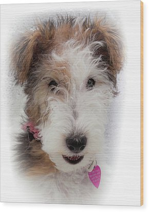 Wood Print featuring the photograph A Dog Named Butterfly by Karen Wiles