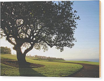 Wood Print featuring the photograph A Dreamy Dream by Laurie Search