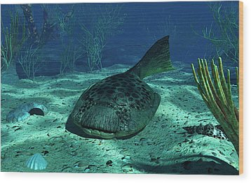 A Drepanaspis On The Bottom Wood Print by Walter Myers