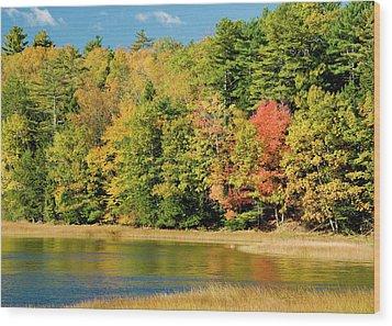 A Fall Pond   Wood Print