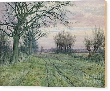 A Fenland Lane With Pollarded Willows Wood Print by William Fraser Garden