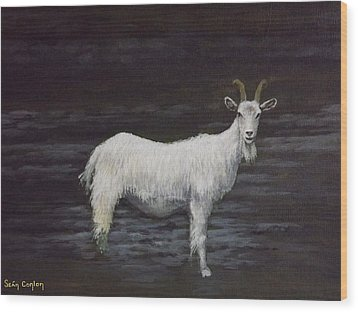 A Feral Goat On The Burren Wood Print by Sean Conlon