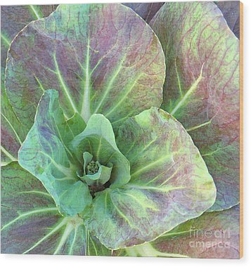 A Floral IIi Wood Print by Gary Everson