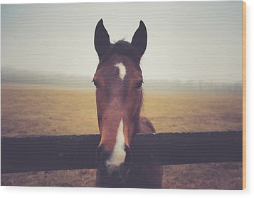 Wood Print featuring the photograph A Foggy Christmas Day by Shane Holsclaw