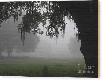A Foggy Day In Rural Fl Wood Print by Marilyn Carlyle Greiner