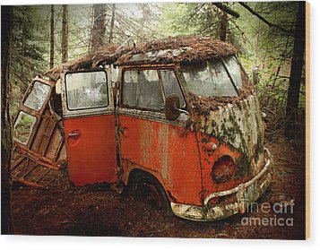 A Forgotten 23 Window Vw Bus  Wood Print by Michael David Sorensen