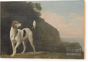 A Foxhound Wood Print by George Stubbs