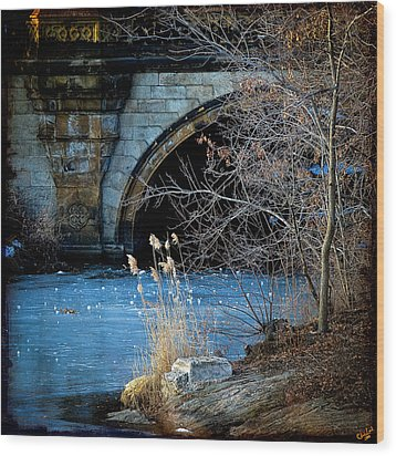 A Frozen Corner In Central Park Wood Print by Chris Lord