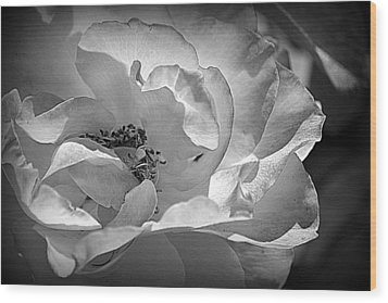 Wood Print featuring the photograph A Garden Treasure by Lori Seaman