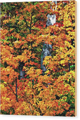 A Giant Passes Wood Print by Steve Harrington