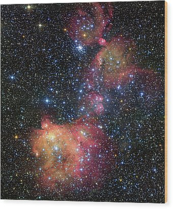 Wood Print featuring the photograph A Glowing Gas Cloud In The Large Magellanic Cloud by Eso
