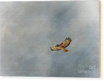 A Good Day To Fly Wood Print by Krista-