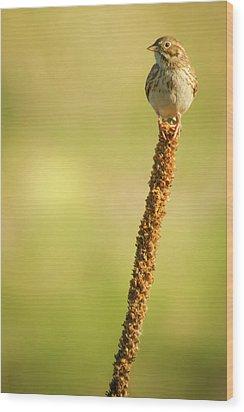 Wood Print featuring the photograph A Great Sense Of Balance IIi by John De Bord
