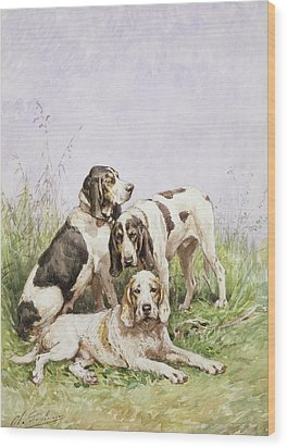 A Group Of French Hounds Wood Print by Charles Oliver de Penne