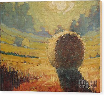 A Hay Bale In The French Countryside Wood Print by Robert Lewis