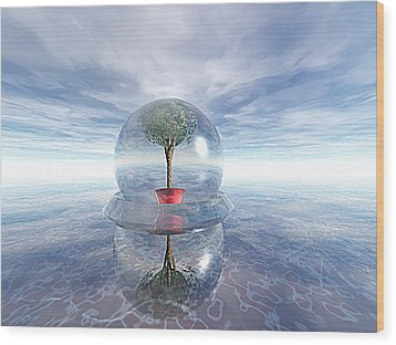 A Healing Environment Wood Print by Oscar Basurto Carbonell