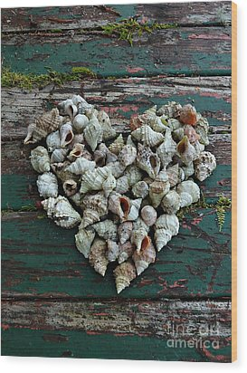 A Heart Made Of Shells Wood Print by Patricia Strand