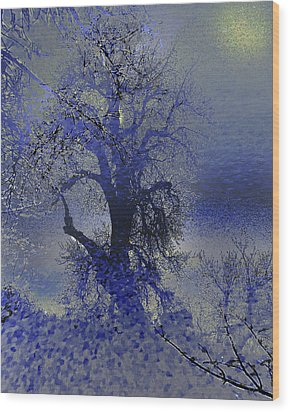 Wood Print featuring the photograph A Hoar Frost Morning by Irma BACKELANT GALLERIES