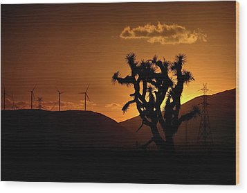 Wood Print featuring the photograph A Holy Joshua Tree by Peter Thoeny