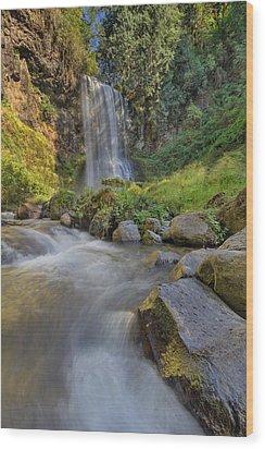 A Hot Sunny Day At Upper Bridal Veil Falls Wood Print by David Gn