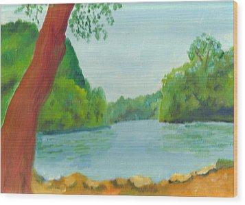 A June Day At Hidden Falls Wood Print