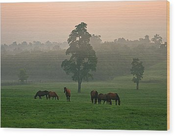 A Kentucky Morning. Wood Print