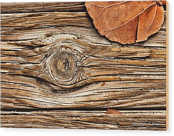A Knot Wood Print by Christopher Holmes