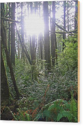 A Light In The Forest  Wood Print