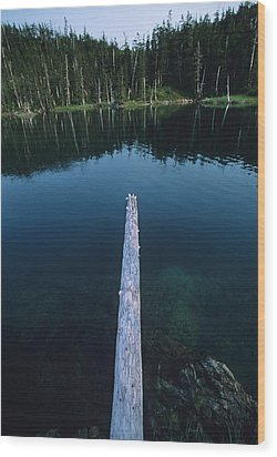 A Log Juts Out Over A Lake Wood Print by Bill Hatcher
