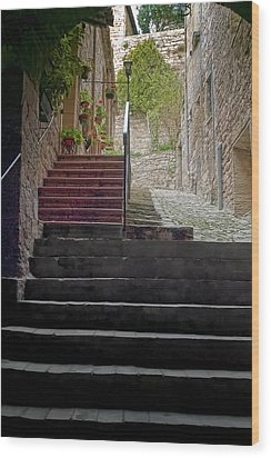 A Long Climb Up Tuscan Steps Wood Print by Michael Flood