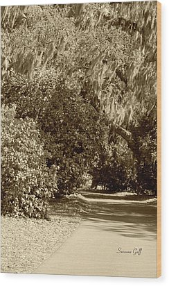 A Lowcountry Springtime Wood Print by Suzanne Gaff