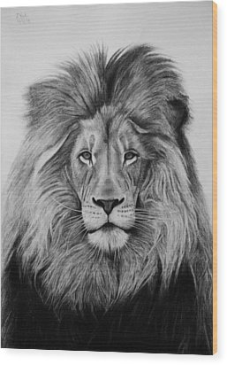 A Majestic Stare Wood Print by Vishvesh Tadsare