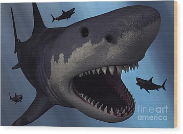 A Megalodon Shark From The Cenozoic Era Wood Print by Mark Stevenson