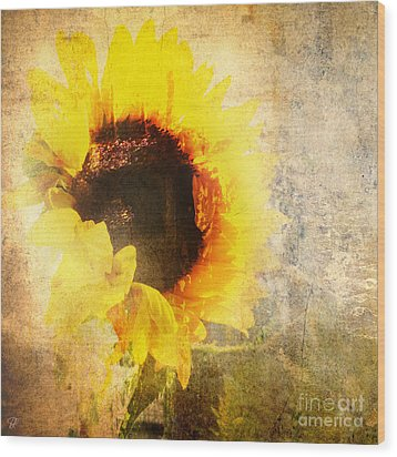 Wood Print featuring the photograph A Memory Of Summer by LemonArt Photography