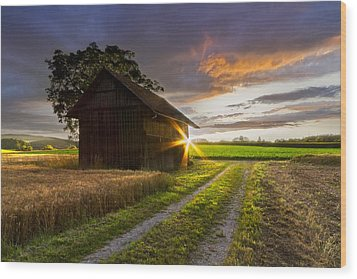 A Moment Like This Wood Print by Debra and Dave Vanderlaan