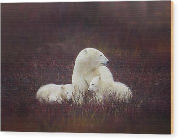 A Mother's Love Wood Print by Debby Herold