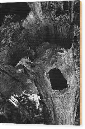 A Natural Primordial Scream Wood Print