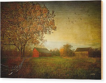 A New Dawn Wood Print by Michael Petrizzo