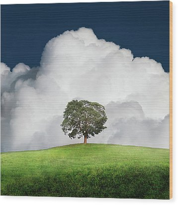 A New Unity Wood Print by Ian David Soar
