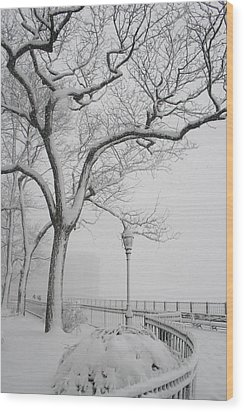 A Nor'easter In Brooklyn Wood Print