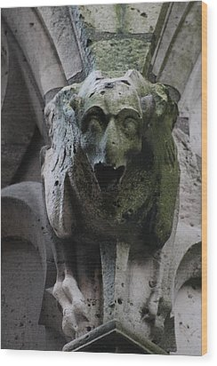 Wood Print featuring the photograph A Notre Dame Griffon by Christopher Kirby