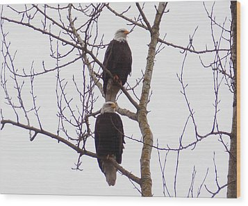 A Pair Of Eagles Wood Print by Karen Molenaar Terrell