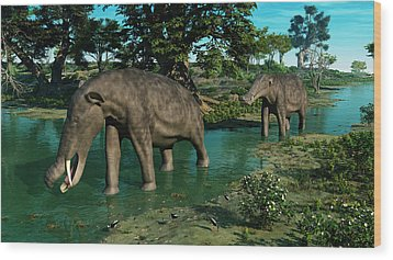 A Pair Of Platybelodon Grazing Wood Print by Walter Myers