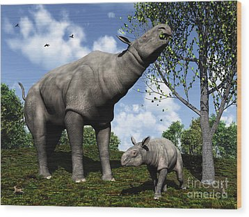 A Paraceratherium Mother Grazes Wood Print by Walter Myers