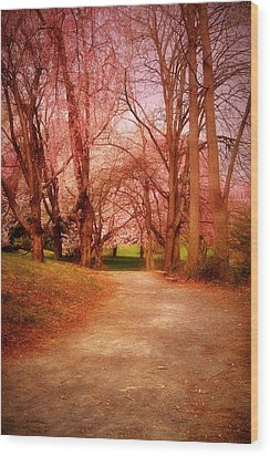 A Path To Fantasy - Holmdel Park Wood Print by Angie Tirado