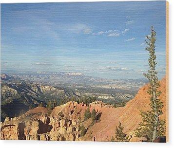 A Perfect Spot At Bryce Canyon Wood Print