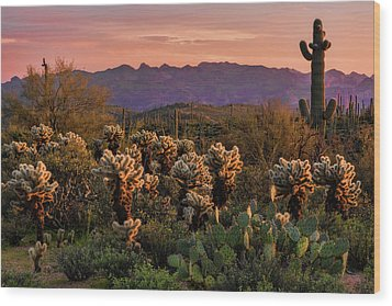 Wood Print featuring the photograph A Pink Kissed Sunset  by Saija Lehtonen