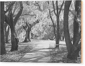 A Place For Contemplation Ir Wood Print by Suzanne Gaff