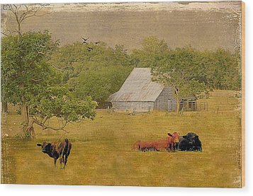 A Place For Togetherness Wood Print by Jan Amiss Photography