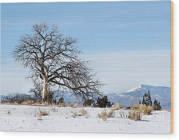 A Placid Winter Scene Wood Print